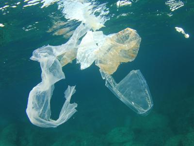 Report Wwf, 100 mln t di plastica disperse in natura ogni anno