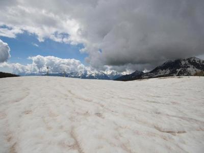 Con sabbia Sahara neve Alpi fonde più velocemente