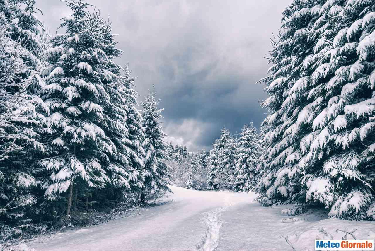 immagine 1 articolo neve in arrivo fino in collina ecco tutti i dettagli