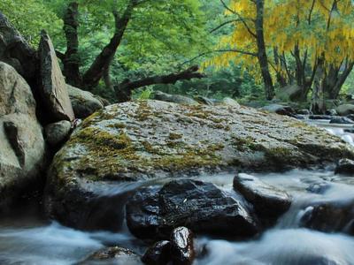 Val Grande, dal 27 giugno al 19 settembre '50 sfumature di Parco'