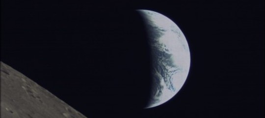 Ègià morta la prima pianta germogliata sulla Luna