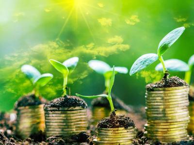 L'economia green in 5 mosse, ecco come creare 800mila posti lavoro al 2025